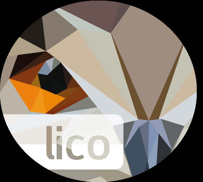 LICO Innovations logo